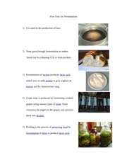 uses of fermentation homework