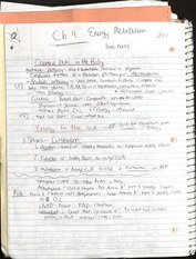 Chapter 9 Notes- Energy and Metabolism