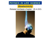 17_A bioelectricity