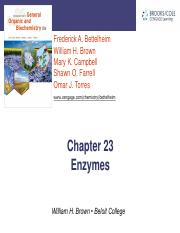 CH23 ENZYMES