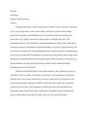 Chapter 7 hw essay