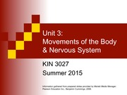 3   Movements of Body  Nervous System 2015 PDF