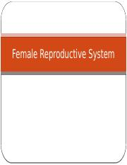 12-2 Female Reproductive System
