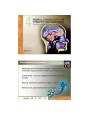 Neural Conduction, Synaptic Transmission