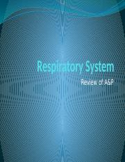 WCU NURS 120 - Review - Respiratory System A and P.pptx