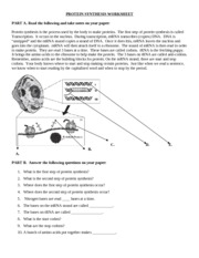 protein-synthesis-worksheet - codons Your body knows where ...