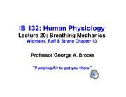 Lecture_20-Breathing_2_The_Pump POSTING