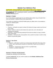 module_four_wellness_plan (1).doc