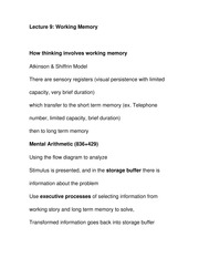 Working Memory Study Guide