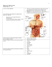 Bio 40C Digestive System Notes