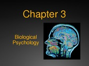 Chapter 3 Psych