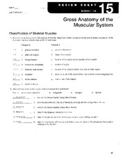 review sheet exercise 15 spinal cord and spinal nerves Cliffsnotes study guides are written by real teachers and professors, so no matter what you're studying, cliffsnotes can ease your homework headaches and help you score high on exams.