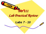 Bio111 Lab Practical Review Labs 7-10 Answer Key