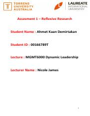 MGMT6000_Demirtakan_Reflexive_Research