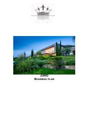 Juno business plan.docx