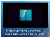 02 If People Were Dolphins