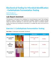 Biochemical Testing for Microbial Identification – Carbohydrate Fermentation Testing.docx