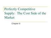 Chapter 6 PowerPoint Slides-Perfectly Competitive Supply