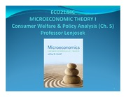 Ch 5, ECO2144, Consumer welfare and policy analysis(2)