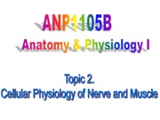 Topic 2-Cellular Physiology of Nerve and Muscle