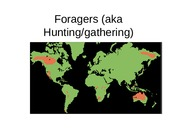 Characteristics+of+foragers.ppt
