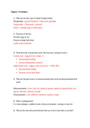 Chapter 5 Worksheet