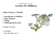 BIS2C Lect 29_Ward_Mollusca_ppt
