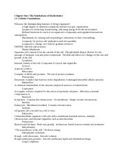 Proteins Study Guide.docx