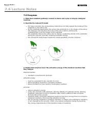 notes--enzymes 2.pdf