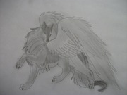 wolf-with-wings_1_000000052733_1