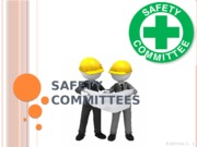 Safety committees