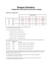 Dragon Genetics Lab answer sheet(1)