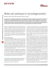 Bossy-Wetzel et al (2004) Molecular pathways to neurodegeneration.pdf
