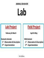 Lab Lecture 1