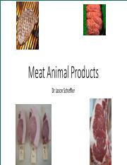 Meat notes.pdf