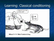 PSYCH105_classical conditioning