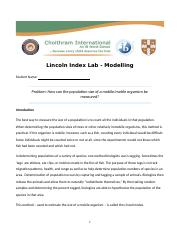 Lincoln Index Lab.docx