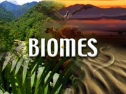 Biomes Powerpoint Presentation 2012