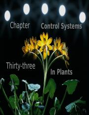 Chapter 33-Control Systems in Plants