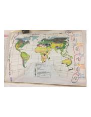 APES WORLD MAP