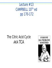BB_LECTURE-13_Metabolism_The Citric Acid Cycle-rev.ppt