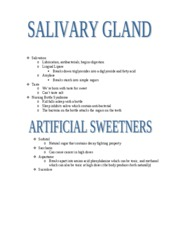 NS 115 - Salivary Gland