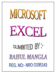 Project on Excel
