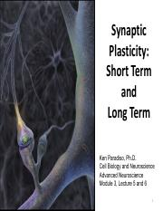 Adv Neuro, Module 3, Lectures 5 and 6, Fall 2016, Synaptic Plasticity.pdf