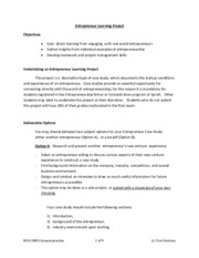 Entrepreneur Learning Project Information