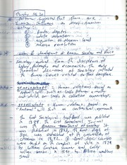 Pettiview's Suggestions Notes