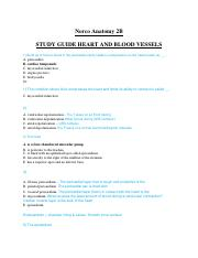 AMY 2 Exam #3 Heart and Blood Vessels STUDY GUIDE.docx