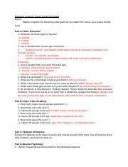 Module 4 Lesson 1 Notes Guide Document.docx