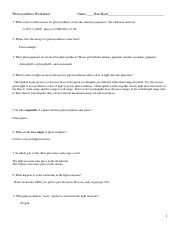 Photosynthesis_Worksheet .doc