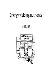 MBS+332+Energy+yielding+nutrients+9+sept